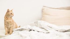 Oni-fabrics-blog_Top_Tips-to-Sleep_Well